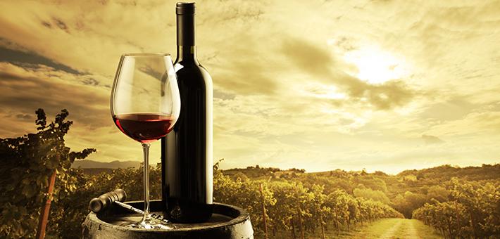 Como importar vinos 3