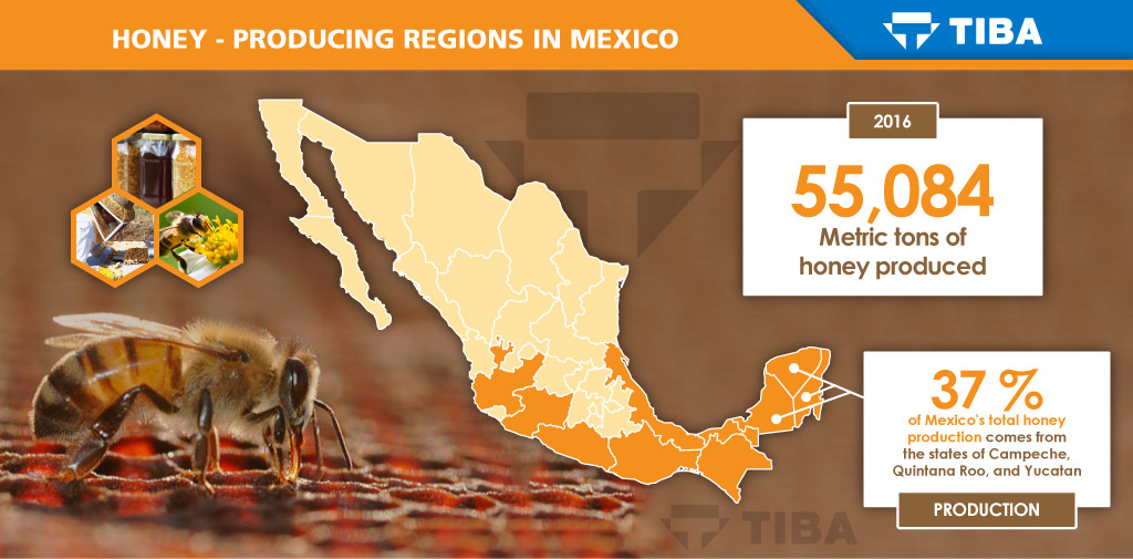 Exporting Mexican Honey Breaks Down International Barriers